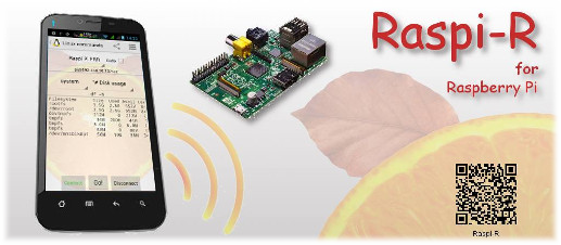 Raspi-R Android app for Raspberry Pi (Google Play Store)